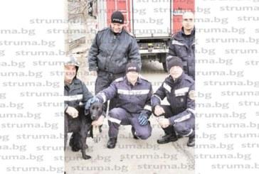 Петима пожарникари в спасителна акция за лабрадор, паднал в река Джерман