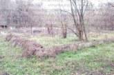 Продават на търг старите кортове в сърцето на благоевградския парк Бачиново