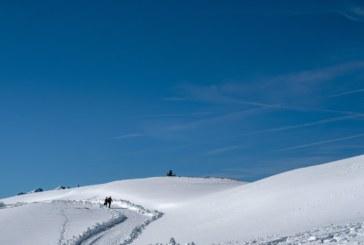Метеоролозите обясниха необичайно топлата зима