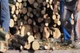 """""""ДГС Дупница"""" предлага дърва за огрев на жителите на общината"""