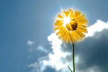 Слънчева неделя, максималните температури между 2° и 7°