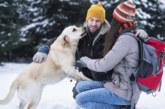 Учени: Мъжете глезят по-често кучетата, отколкото половинките си