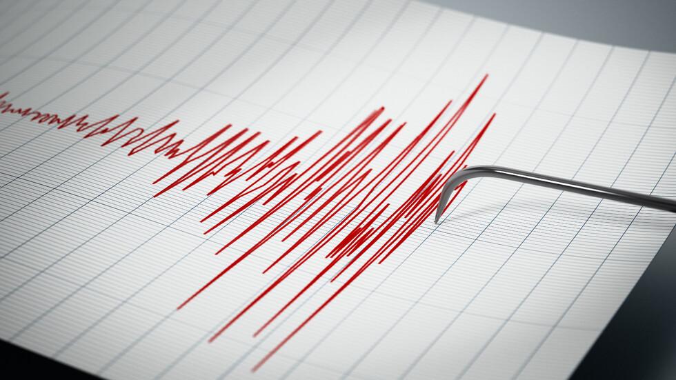 Силно земетресение разтърси Япония