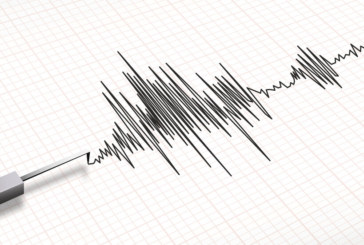 Седем загинали след земетресението между Турция и Иран