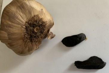 Черният чесън – скилидки здраве