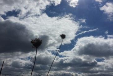 Седмицата идва с облаци и вятър