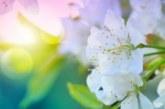4 зодии ще се радват на пари и любов през април