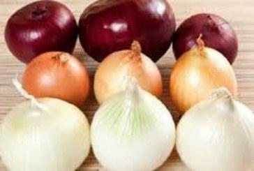 Учени разкриха колко лук трябва да ядем, за да се спасим от рака