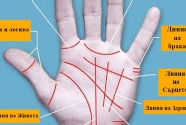 Истината на дланта ти: Научи се да четеш линията на сърцето