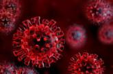 Учени отговарят създаден ли е коронавирусът в лаборатория