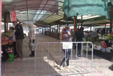 Само 3-ма продавачи на зеленчуци се осмелиха вчера да излязат на пазара в Дупница, клиенти нямаше