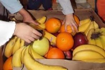 Мащабна акция готвят по училищата, по инициатива на Министерството на земеделието и ДФЗ горски служители ще разнасят плодове и мляко по домовете на учениците