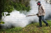 В Радомир пръскат срещу комари