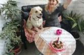 Благоевградската адвокатка Мария Георгиева празнува рожден ден на любимото си куче