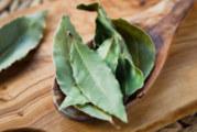 6 болести, при които помага дафиновият лист