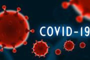 14 нови случая на COVID-19 у нас