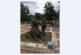 """Инж. А. Мавродиев """"подстрига"""" първото в Югозапада зелено """"кученце"""" пред Регионалната библиотека"""