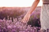 10 неща, които усеща влюбващата се жена