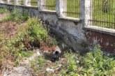 Незаконни зауствания откри община Перник по сигнал на граждани