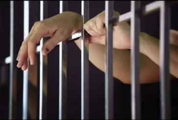 Четирима в ареста в Перник за наркотици