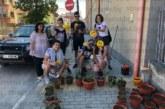 """Ученици от ПМГ – Гоце Делчев създават цветни кътчета в училището, обучават се в отглеждането на цветя """"чистачи"""" и билки"""