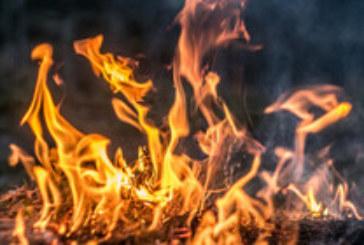 Горски пожари бушуват в Русия