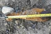 Унищожиха невзривена мина в Благоевградско