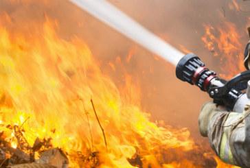 ОГНЕН УЖАС! Големи пожари бушуват на гръцките острови Евия и Крит