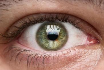 Никой не се ражда със зелени очи