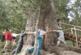 Разложката котловина – туристическата съкровищница между три планини