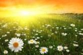 Времето: Слънчево, максимални температури между 30 и 35 градуса