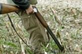 Ловец от Банско застреля крава, унищожила дръвчетата край вилата му