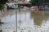 Бурията изкорени дърво в Кюстендил, проливни дъждове в Банско и Благоевград, утре опасно време в 12 области /снимки/