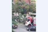 Бурята събори огромно дърво на кръгово в Благоевград
