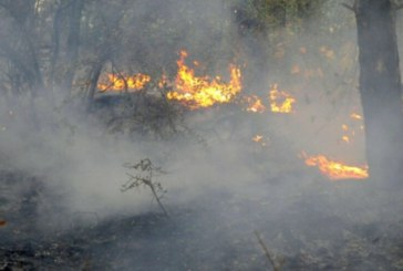 Голям пожар гори между три села край Сандански