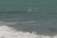 43-годишна туристка се е удавила в морето край Обзор