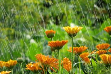 Oблачна  и дъждовна събота
