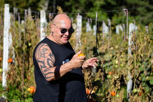 """Дъбравски червен домат оглави Топ 10 на Фънки в категория """"универсално мезе"""""""