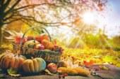 Как да се храним през есента, за да сме здрави през зимата