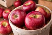 Никога не яжте ябълки по този начин, ще сгрешите