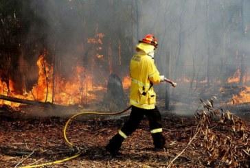 Огнеборци гасиха 3 пожара в Дупнишко