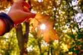 Времето: Слънчево, максималните температури между 22 и 27 градуса
