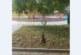 """1 г. след публикация в """"Струма"""" институциите бездействат!  Читатели: Стълбове на улични лампи падат от ръжда и корозия в построения с 1 млн. лв. парк в центъра на Благоевград, стърчат опасни кабели, по чудо няма пострадали…"""