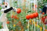 Сменят сезонните работници в Англия с роботи