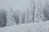 Падна първият сняг за сезона