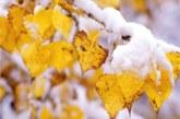 Първи сняг в Русия