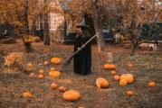 4 зодии, които са във вихъра си на Хелоуин