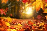 С какво време започва октомври