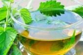 Чай от сушена коприва сваля кръвната захар