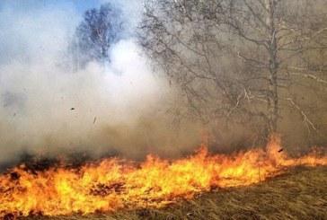 Огнеборци гасиха пожар в Сапарева баня